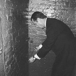 secrets in the cellar pdf