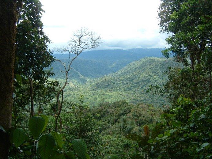 Vista de la punta del Mirador del Copal