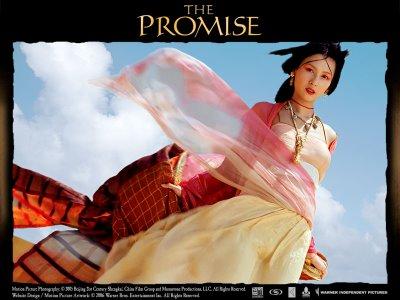 promise gamer