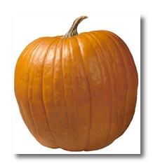 Gilly Pumpkin