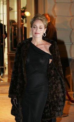 Sharon Stone's nipple slip