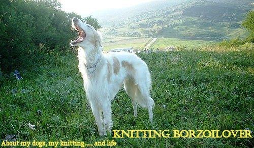 Knitting Borzoilover