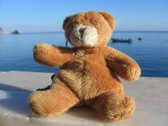 Urso Prestável