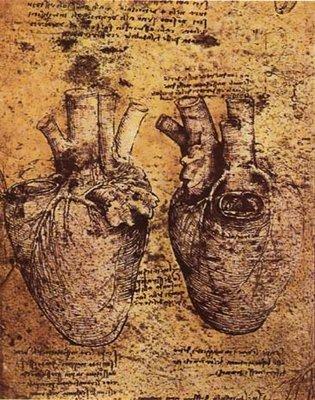 Leonardo da Vinci [1452-1519] | estudo anatómico do coração, veias e artérias | caderno de windsor | s.d.