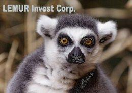 Lemur Invest Corp.