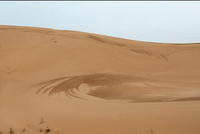 click here more Sand dune photos