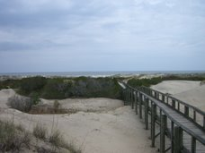 The dunes on Cumberland