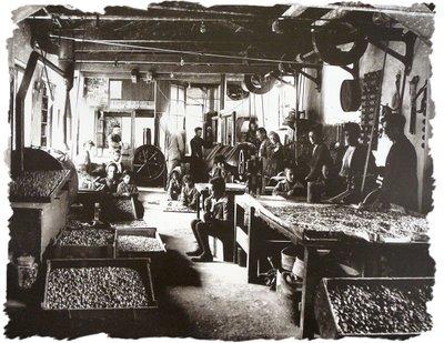 Fotografi Te Vjetra Historike Shqiptare! Factory%201