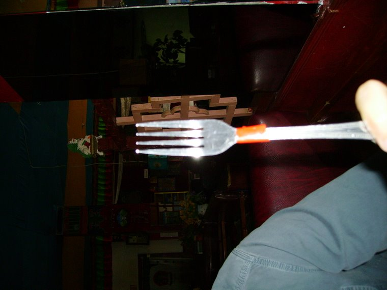 The adventures of Fork.