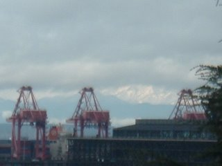 Snowfall on Olympics in the background.
