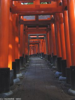 Fujimi-inari Shrine, Kyoto sightseeing