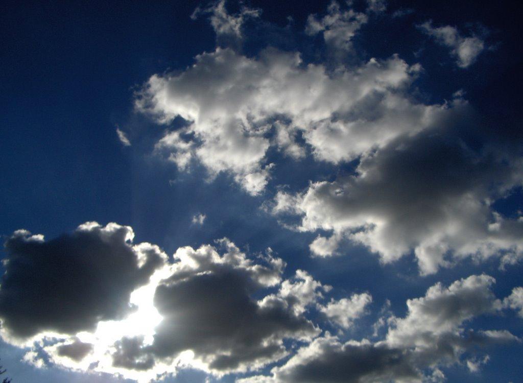 http://photos1.blogger.com/blogger2/6689/988370697981249/1600/luz.jpg