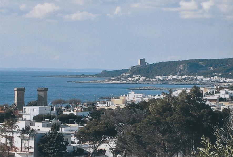 http://photos1.blogger.com/blogger2/6788/1019499354137956/1600/santarita1.0.jpg