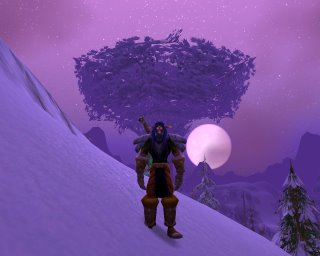 Night time and full moon in Winterspring, near Winterfall Village