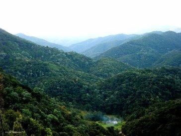 Serra do Pinheiro - Anitápolis