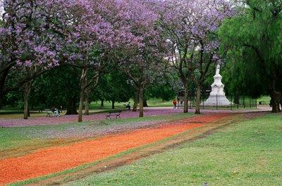 Colores del Parque Ameghino