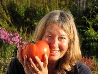 Val with giant tomato which weighed one kilo. These 'beefsteak' tomatoes taste incredibly good too!