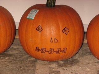 giant pumpkin, organically grown by Jill