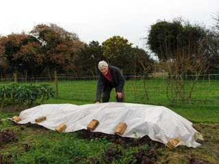 Covering up the finished compost so the rain doesn't leach its nutrients
