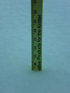 19 inches of snow on the back deck
