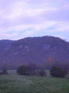 colline autunno bosco natura parsaggio calanchi