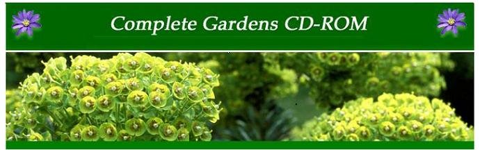 Oxford right plant identification and advice website.