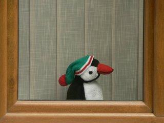Pinguin la geam-detaliu