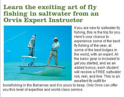Orvis's fly fishing clinics