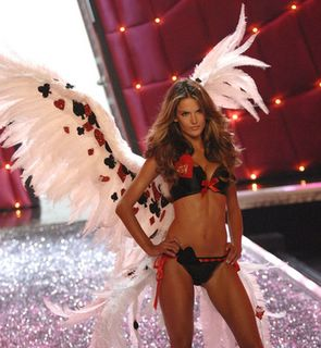 Alessandra Ambrosio wearing wings - Victorias Secret Fashion Show