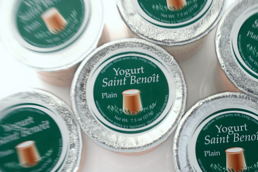 photograph picture St Benoit plain yoghurt yogurt containers