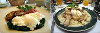 photograph picture 3 eggs benedict at normas and serafina in new york city