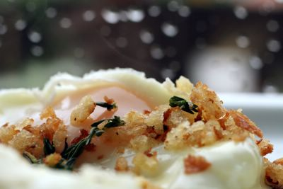 photograph picture of cocotte-cooked egg with reduced cream and thyme breadcrumbs, comfort on a rainy stormy day