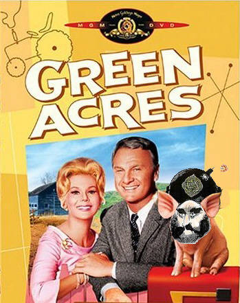 Green Acres featuring Mohammed the pig
