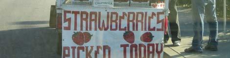 Alexander koopt aardbeien, een foto door de stoffige voorruit