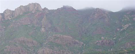 Mountain Boney in the rain