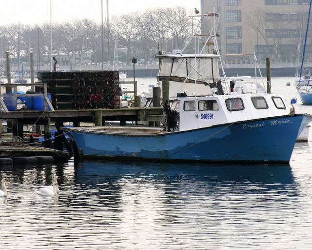 A day on sheepshead bay blather from brooklyn for Sheepshead bay fishing boats