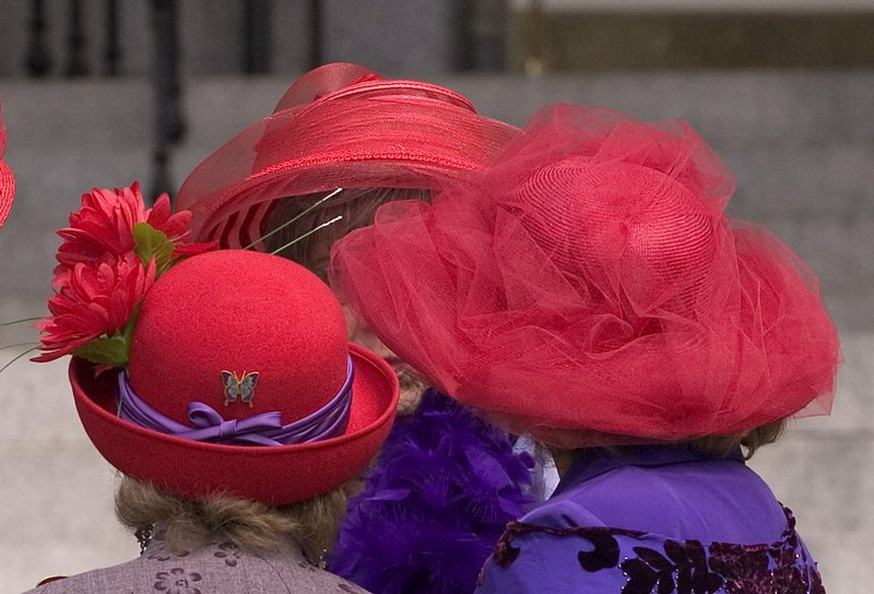 The Panic Blog: The Red Hat Society = Women Gone Wild !