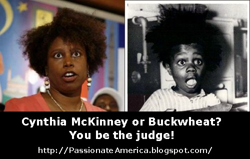 Is Cynthia McKinney really former Little Rascals star Buckwheat?