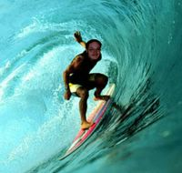 Wild Bill Surfing the Web.