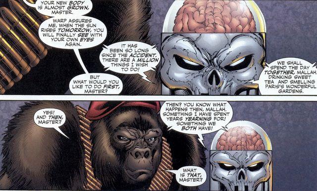 Monsieur Mallah And The Brain