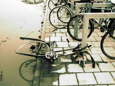 bike scavengers amsterdam, © Dreaming in Neon 2006