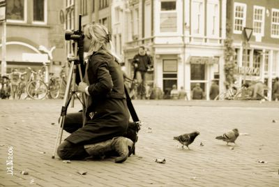 they shoot pigeons, don't they? ; ©Dreaming in Neon 2006