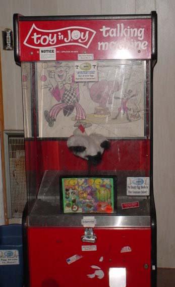 Toy N Joy Machine : Smurf blood