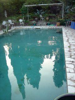 strereo savvy pool