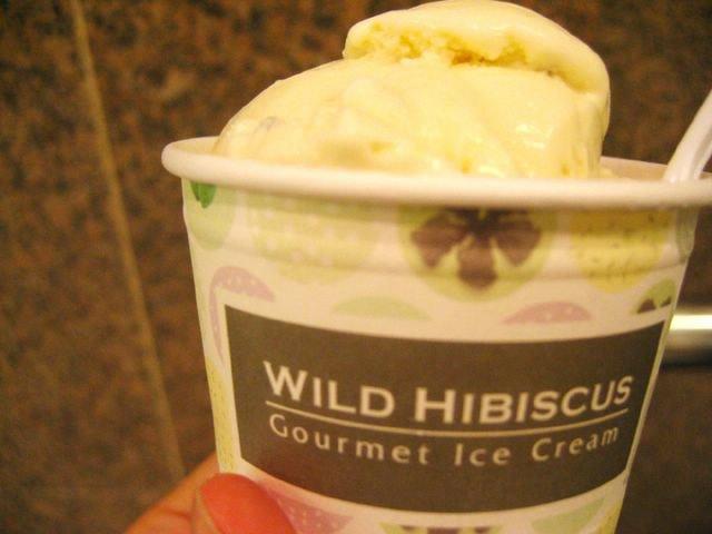 Wild Hibiscus Gourmet Ice Cream