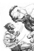 Ultimate Hulk vs. Wolverine
