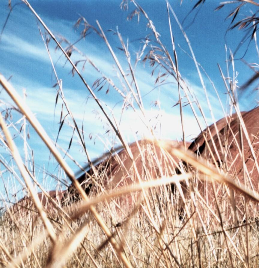 Uluru, dry grass