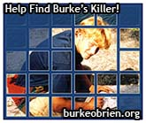 Find Burke's Killer!