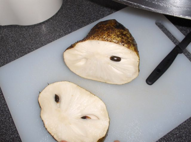 tamarind fruit fruit splat