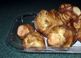 Knobs of Jerusalem artichokes, straight from the package